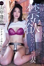>Aika Yamagishi ภรรเมียจิ๋มล็อคผัวช็อคทั้งน้ำตา PRED-153 ซับไทย jav